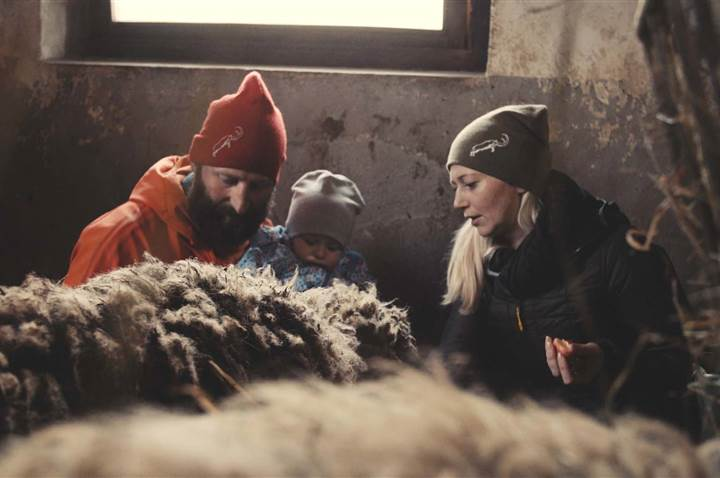 Family looks at a sheep